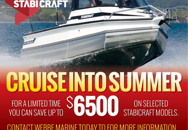 Cruise into Summer With a New Stabicraft From Webbe Marine